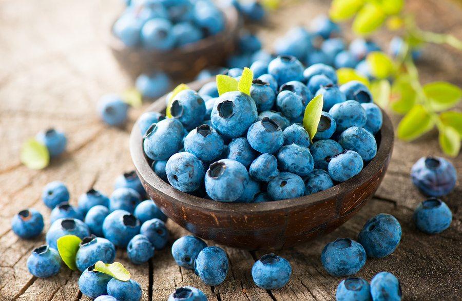 Senior Care in Plainsboro NJ: Health Benefits of Blueberries